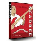 SCARBEE Red Bass KONTAKT v1 0 3-ASSiGN
